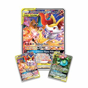 Pokémon TAG TEAM Generations Premium Collection